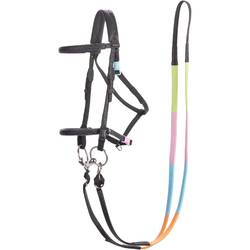 100 Horse Riding Bridle + Reins For Pony - Black