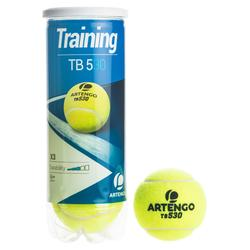 网球运动有压3只装网球 ARTENGO TB820